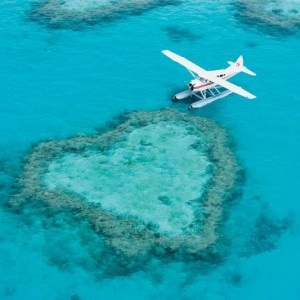 plane-at-heart-reef-5705